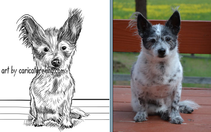 caricature of a small dog